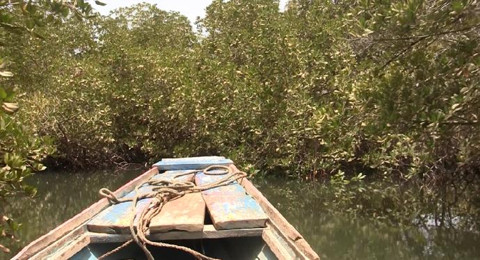 Cayuco en Delta Saloum, Senegal